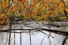 Cäcillie van Hagen: Groovsche Loch