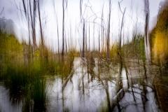 Heiner Ott Groovsche Loch