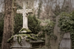 3 von 12 Markus Peters Melaten-Friedhof