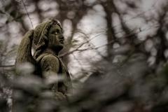 4 von 12 Markus Peters Melaten-Friedhof