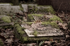 5 von 12 Markus Peters Melaten-Friedhof