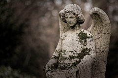 11 von 12 Markus Peters Melaten-Friedhof