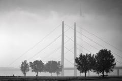 Bärbel Brechtel: Spaziergänge am Rheinufer in Oberkassel